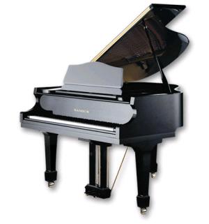 Sponsor a Piano Key